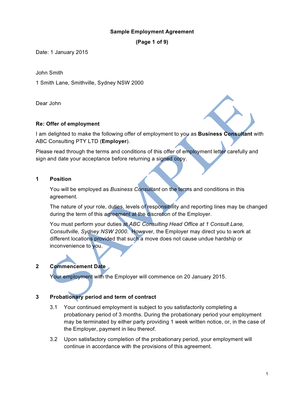 Employment Agreement (Professional Services)